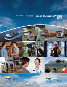 Small Business Profile 2013 Cover